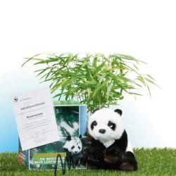 WNF panda-adoptiepakket